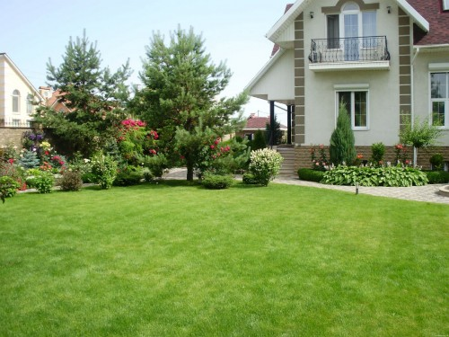 Что нужно знать и какие факторы учитывать при выборе газона для участка