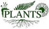 Ландшафтно-озеленительная компания PLANTS