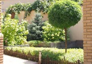 Выполненный объект Монохромный сад